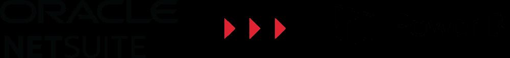 AVT NetSuite Power BI Integration