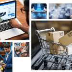 AVT NetSuite for B2B/B2C Companies