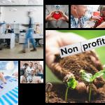 AVT NetSuite for Non for Profit Companies