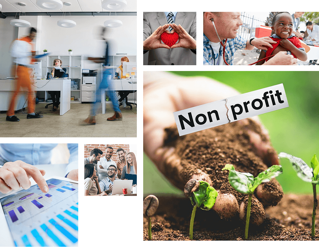 NetSuite for Non for Profit Organisations