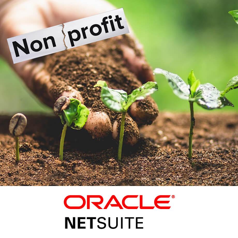 AVT NetSuite for NonProfit Companies